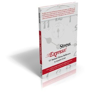Stress Express by Snowden McFall